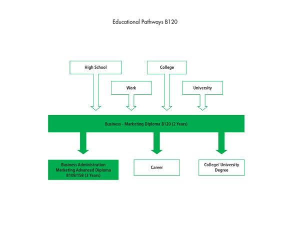 There are many pathways into the Business - Marketing Diploma B120 program including high school, work, and other college or university programs. After graduating from the program, students can go to work, or they can further their education through the Business Administration - Marketing Advanced Diploma, or a college or university degree.
